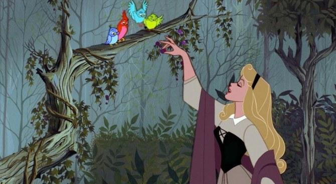 La bella addormentata nel bosco sessantanni e non sentirli film.it