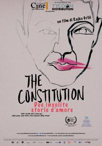 The constitution - Due insolite storie d