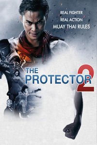 protector2.jpg