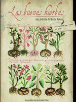 Las buenas hierbas - Poster
