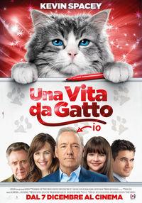 una_vita_da_gatto.jpg