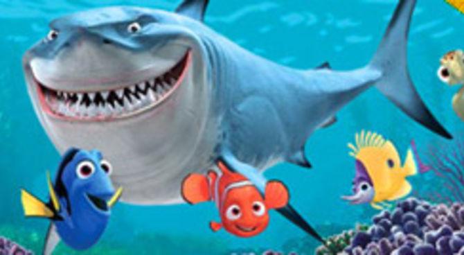 Nemo un cucciolo in viaggio for Immagini dory